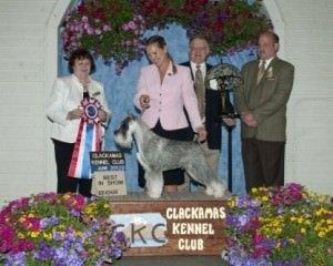 Clackamas County Kennel Club Dog Show