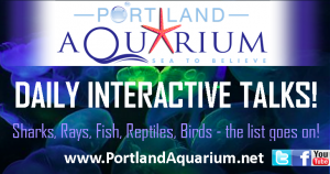Portland Aquarium Interactive Talks
