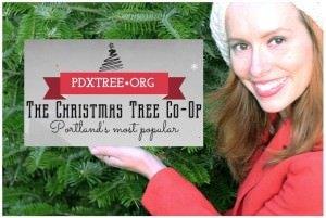 The Christmas Tree Co-op