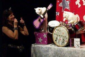 The Amazing Acro-cats @ The Imago Theatre