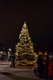 Lake Oswego Tree Lighting
