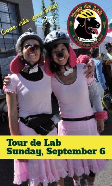 Tour de Lab
